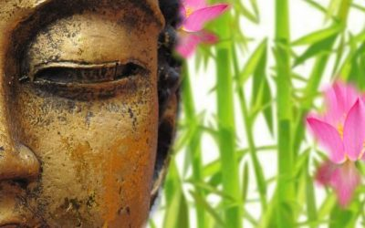 Hoy decido ser feliz aumentando mi sabiduría experiencial